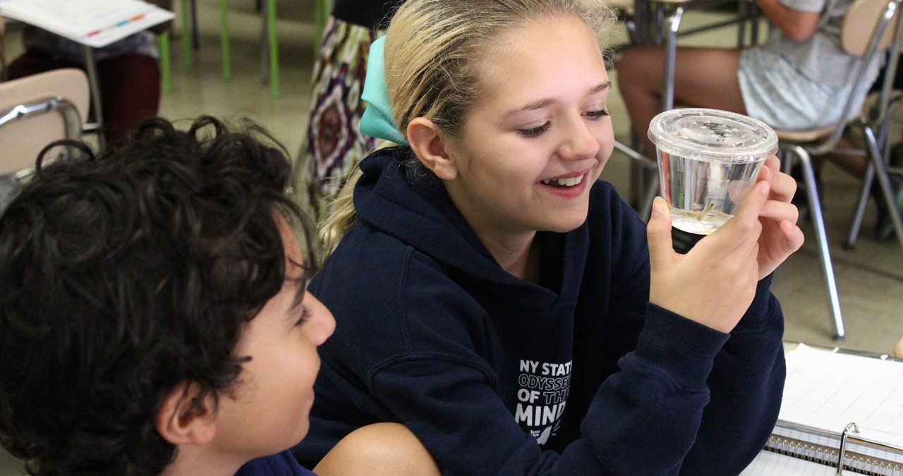 Two students observing guppies in plastic glass of water.