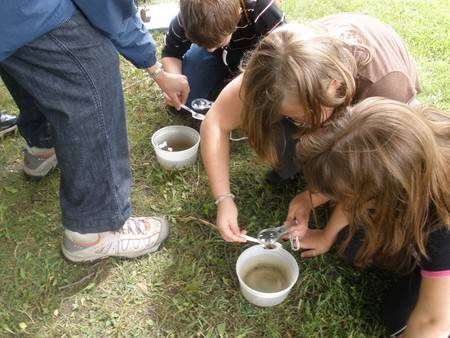 Students studying water