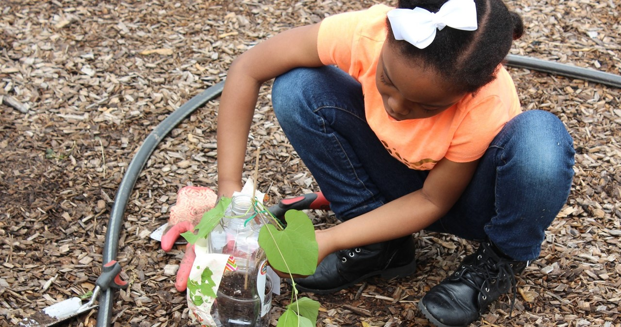CRS student planting in the Garden of the Saints